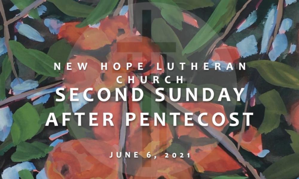 Second Sunday after Pentecost