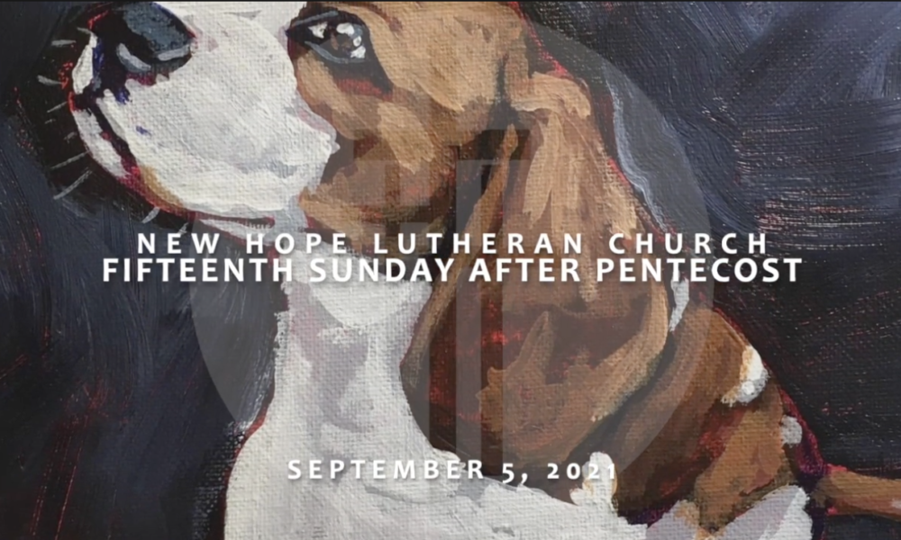 Fifteenth Sunday After Pentecost 2021